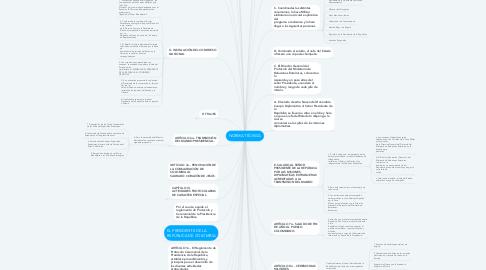Mind Map: NORMA TÉCNICA