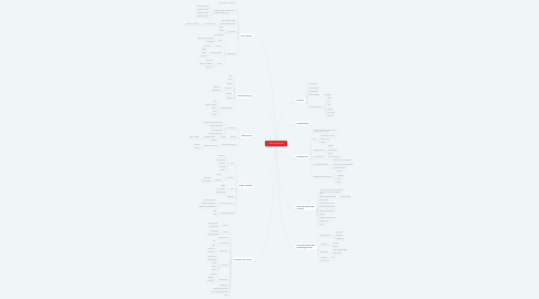 Mind Map: IT B kompetencer