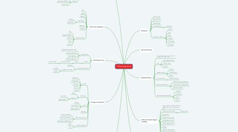 Mind Map: IT B kompetencer