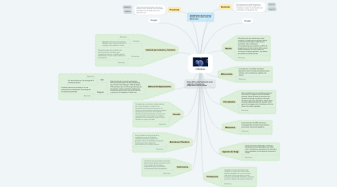 Mind Map: CÉLULA