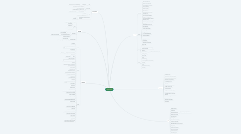 Mind Map: experience