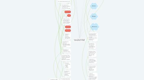 Mind Map: Copy of TIPOS DE RIESGOS LABORALES BAJO TIERRA
