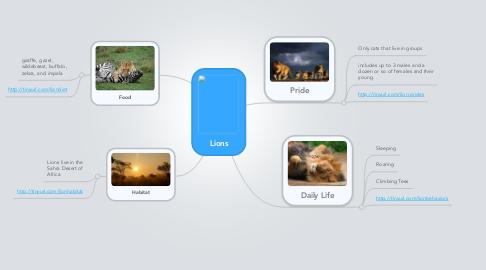 Mind Map: Lions