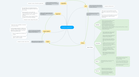 Mind Map: Levels of organization