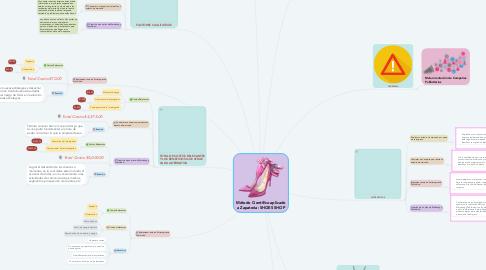 Mind Map: Método Científico aplicado a Zapateria: SHOES SHOP