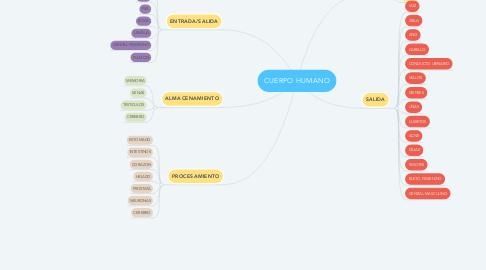 Mind Map: CUERPO HUMANO