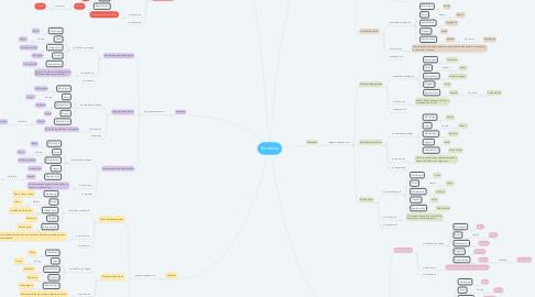 Mind Map: Bacterias