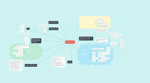 Mind Map: El Management
