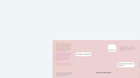 Mind Map: Camaras intraorales
