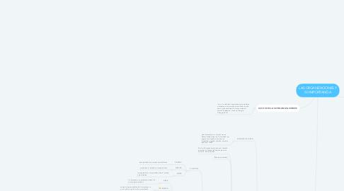 Mind Map: LAS ORGANIZACIONES Y SU IMPORTANCIA