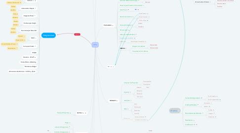 Mind Map: xHis