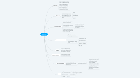 Mind Map: NUTRICION