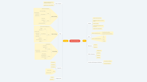 Mind Map: Bone and Cartilage