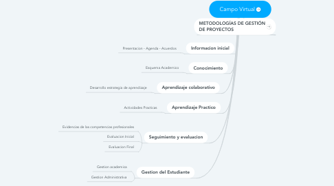 Mind Map: Campo Virtual