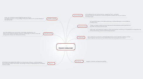 Mind Map: PROJECT CONSULTANT