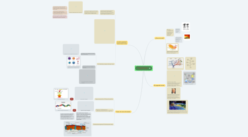 Mind Map: Controversias sobre el  origen de la vida.