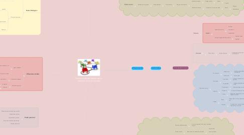 Mind Map: Construcción del mundo de un individuo en la comunidad