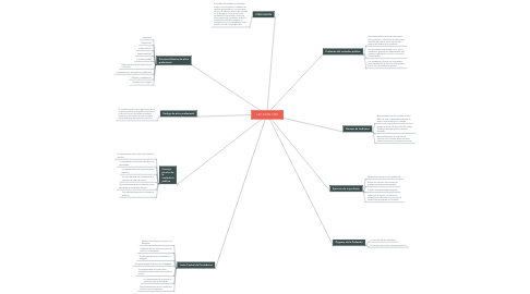Mind Map: LEY 43 DE 1990