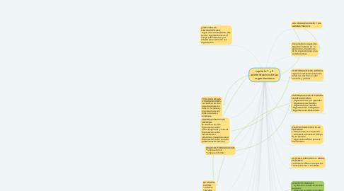 Mind Map: capitulo 1 y 2 administración de las organizaciones