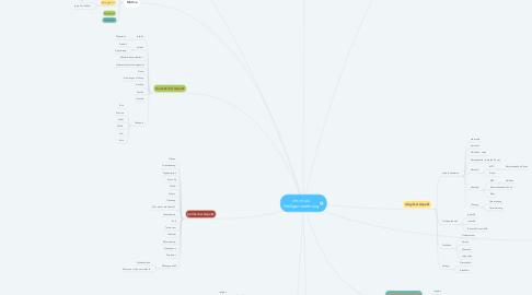Mind Map: chr.-musl. Heiligenverehrung
