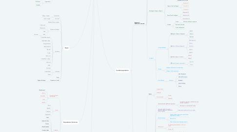 Mind Map: Anatomia II