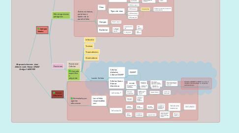 Mind Map: Respuesta Inmune- José Albeiro León Henao UNAD Código 16053935