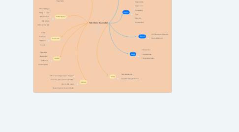 Mind Map: NAC Breda & Aphabet