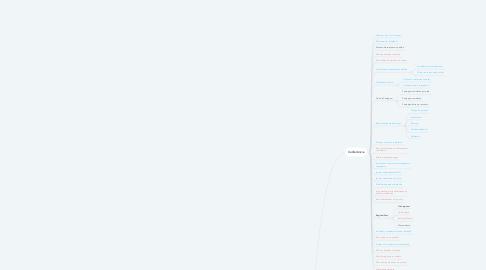 Mind Map: Conferência no coletor