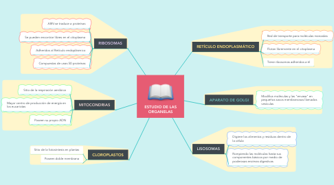 Mind Map: ESTUDIO DE LAS ORGANELAS