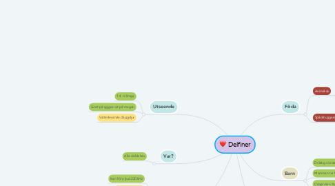 Mind Map: Delfiner