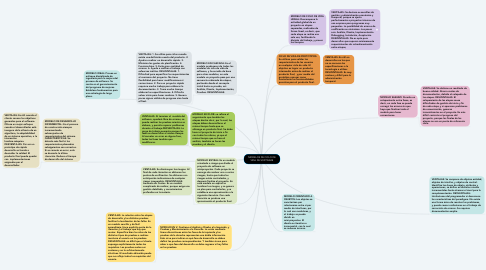 Mind Map: MODELOS DE CICLO DE VIDA DE SOFTWARE