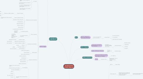 Mind Map: GESTIÓN POR COMPETENCIAS