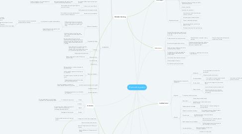 Mind Map: El arte de la guerra