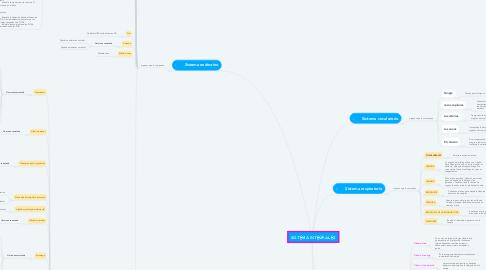 Mind Map: SISTEMA INTEGRALES