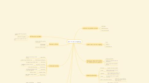 Mind Map: wat is een magazijn