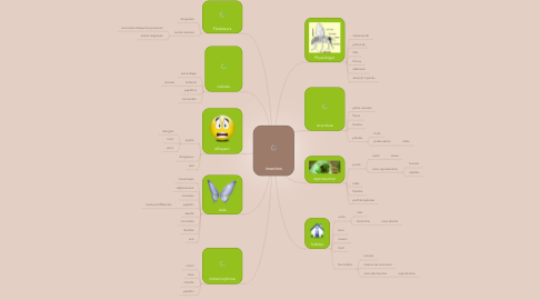 Mind Map: insectes