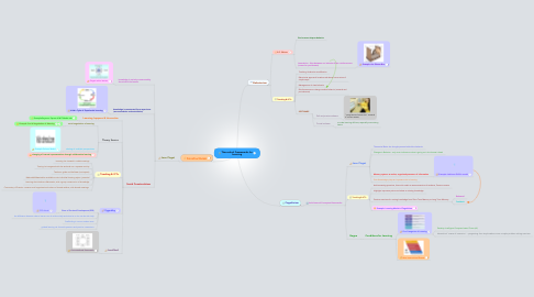 Mind Map: Theoretical Frameworks for Learning