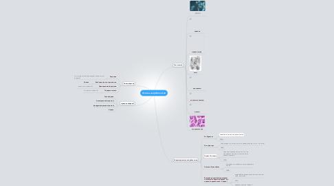 Mind Map: Основы нейробиологии