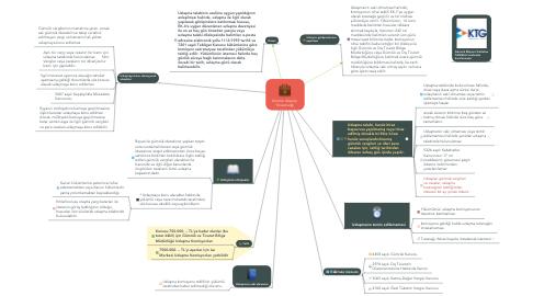 Mind Map: Gümrük Uzlaşma  Yönetmeliği