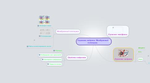 Mind Map: Строение нейрона. Мембранный потенциал.