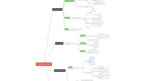 Mind Map: Macronutrímentos en salud