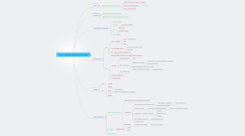 Mind Map: Chatty - Case Study, Edan Maor & Ofir Ovadia