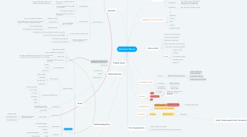 Mind Map: Openbaar Bestuur