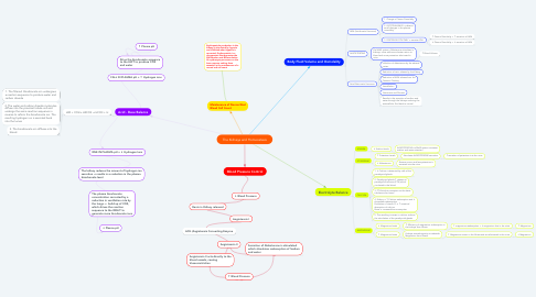 Mind Map: The Kidneys and Homeostasis