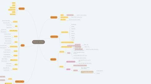Mind Map: Normas Jurídicas