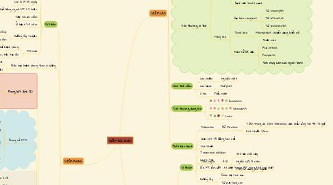 Mind Map: VIÊM ĐẶC HIỆU