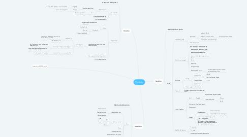 Mind Map: Preistoria
