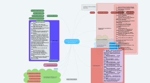 Mind Map: Esquema Mexicano de la Nacionalización