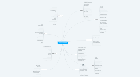 Mind Map: Kundenavatar Top-Manager Dorothea Pe