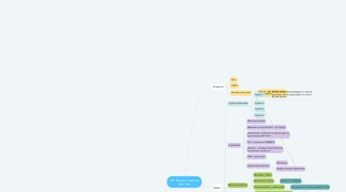 Mind Map: ADS Manager создание рекламы